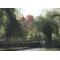 fák és tó