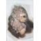 93. Mesi majom - plüss projekt (olaj,vászon 40×60)